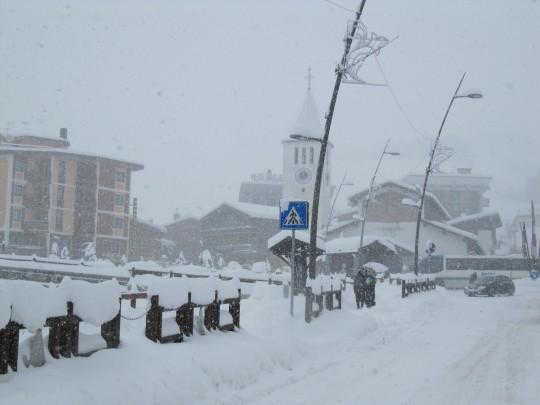 Cervina sotto la neve