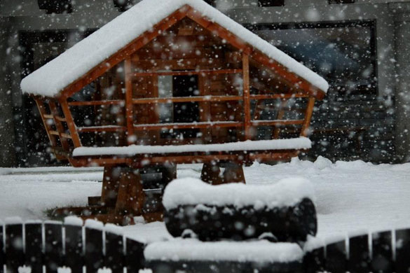 nevicate alpi