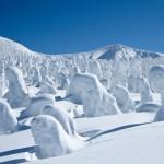 """Snow Monsters: alla scoperta dei """"Mostri di Neve"""""""