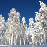 In arrivo il Generale Inverno: Aria Polare e Nevicate a bassa quota