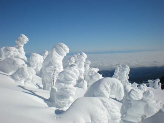 Snow Monsters sulle montagne degli USA