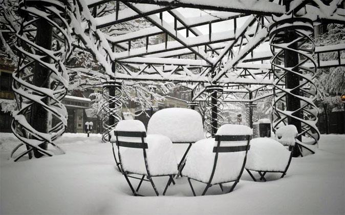Previsioni neve: in arrivo l'Orso Siberiano