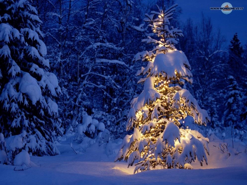 Meteo: sarà un Natale con La NEVE!