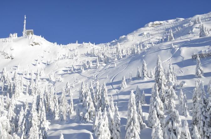 foto nevicata madonna di campiglio