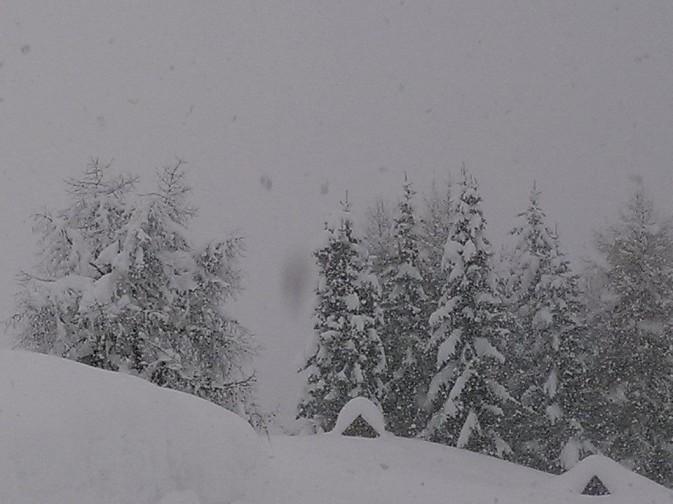 Nevicata a Selva di Cadore - foto di Ristoro Belvedere-Fertazza