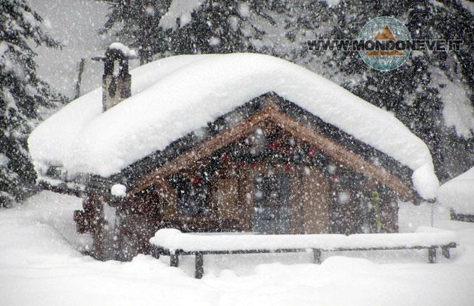 nevicate in arrivo alpi