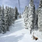 40cm di neve fresca a Campiglio, aperte tutte le piste