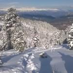 Cermis sotto la neve - Credits Margherita Cenni (16)