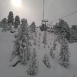 Alpe Cermis - Credits Margherita Cenni (20)