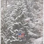 nevicata impianti Monterosa Ski