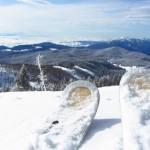 Neve fresca sulle piste - Area Ski Verena