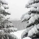 Nevicata a Bardonecchia