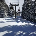 Paganella Ski neve marzo 2016 (5)