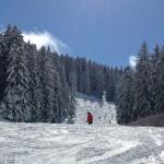 Paganella Ski neve marzo 2016 (8)